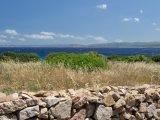 View Vignola